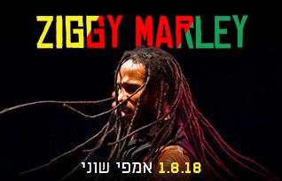 ZIGGY MARLEY 1.8